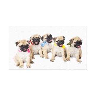 Cute Pug 25 Stretched Canvas Print