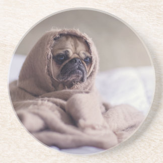 cute pug!! Cutest Pug You have ever seen! Drink Coaster