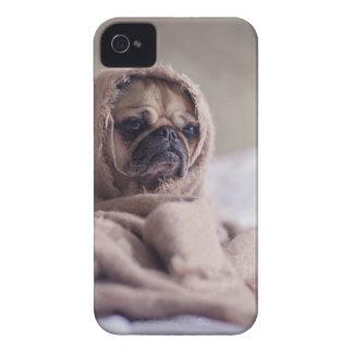 cute pug!! Cutest Pug You have ever seen! iPhone 4 Case-Mate Case