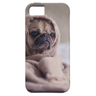 cute pug!! Cutest Pug You have ever seen! iPhone SE/5/5s Case