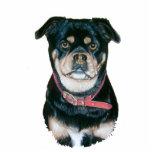 cute pug dog animal portrait art sculpture magnet photo cutout