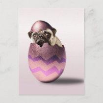 Cute Pug Easter Egg Design Holiday Postcard