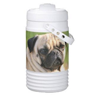 Cute Pug Igloo Beverage Dispenser