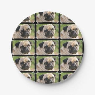 Cute Pug Paper Plate