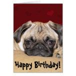 Cute Pug Puppy Birthday Wish Card