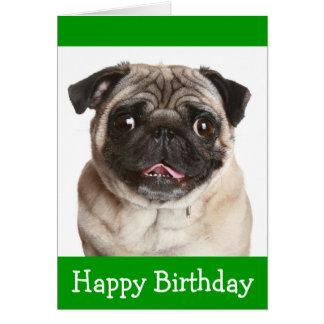 Cute Pug Puppy Dog Happy Birthday Greeting Card