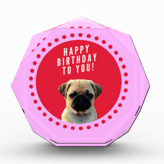 Cute Pug Puppy Dog Happy Birthday Red Dots Pink Acrylic Award