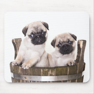 Cute Pug Puppy Dog in Wooden Crate Barrel Mousepad