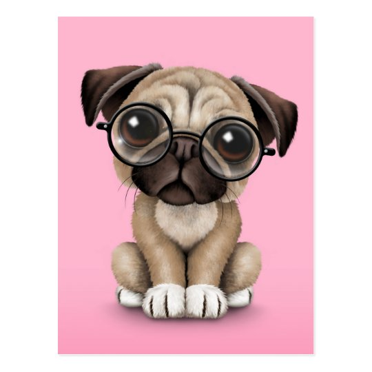 Free Scratch Cards >> Cute Pug Puppy Dog Wearing Reading Glasses, Pink Postcard   Zazzle.com