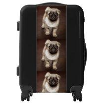 Cute Pug Puppy Luggage