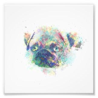 Cute pug puppy watercolor splatters paint photo print