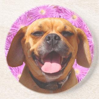 Cute Puggle Coasters