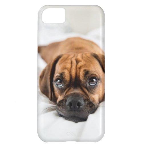 Cute Puggle Dog Case iPhone 5C Cases