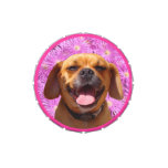 Cute Puggle Jelly Belly Tin
