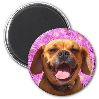 Cute Puggle Magnet
