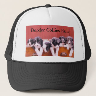 Cute Puppies Border Collies Rule Hat