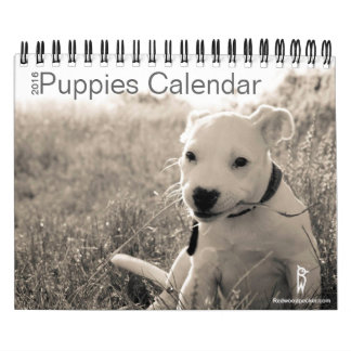 Cute Puppies Calendar 2016