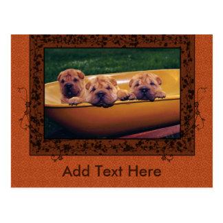 Cute Puppies Greetings Postcard