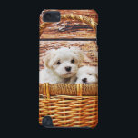 "Cute Puppies iPod Touch 5G Cover<br><div class=""desc"">Cute Puppies Case. Please feel free to customize the Options,  as You wish.</div>"