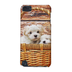 Cute Puppies Ipod Touch 5g Cover at Zazzle