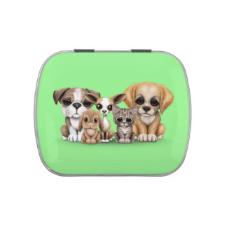 Cute Puppies, Kitten and Bunny Pet Portrait Green Jelly Belly Tin