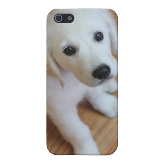 Cute puppy, adorable pup gift for any animal lover case for iPhone SE/5/5s