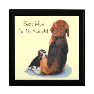 Cute puppy beagle with mum dog realist art jewelry box