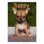 Cute Puppy Birthday Card Greeting Card