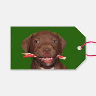 Cute puppy Christmas Pack Of Gift Tags