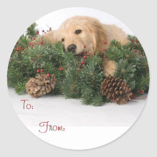 Cute Puppy Christmas Gift Tags Classic Round Sticker
