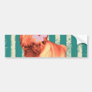 cute puppy daisy green stripes sad pug bumper sticker