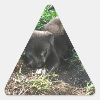 Cute Puppy Digging Himself Into a Hole Triangle Sticker