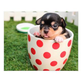 Cute puppy dog chihuahua in a cup photo print