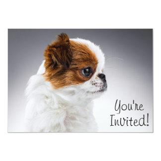 Cute Puppy Dog Invitation Card