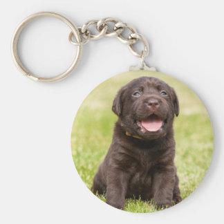 Cute puppy dog keychain