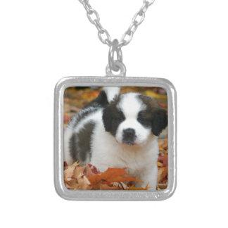 Cute Puppy Dog Pet Saint Bernard Square Pendant Necklace