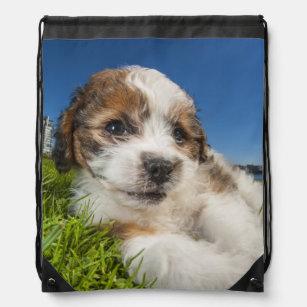 18da899e55d7 Cute puppy dog (Shitzu) Drawstring Backpack