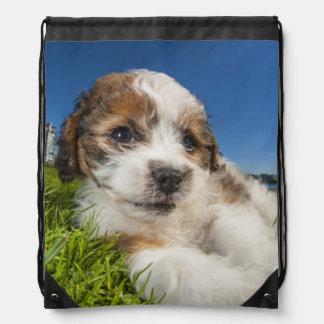 Cute puppy dog (Shitzu) Drawstring Backpack