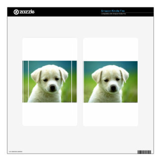 Dpg Gifts On Zazzle