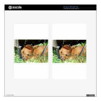 Cute Puppy Golden Labrador Retriever Sleeping Skins For Kindle Fire