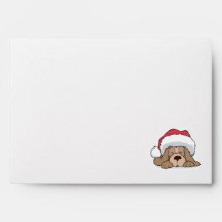 cute puppy in santa hat envelope