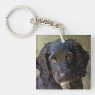 Cute puppy key chain