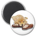 cute puppy labrador retriever dog art magnet magnets