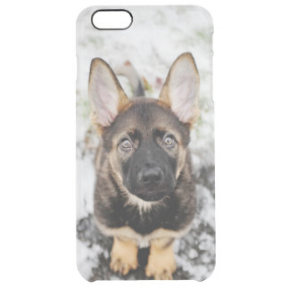 Cute Puppy Looking Up Clear iPhone 6 Plus Case