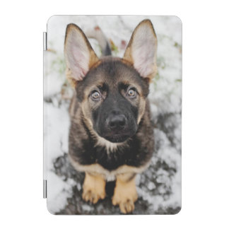 Cute Puppy Looking Up iPad Mini Cover