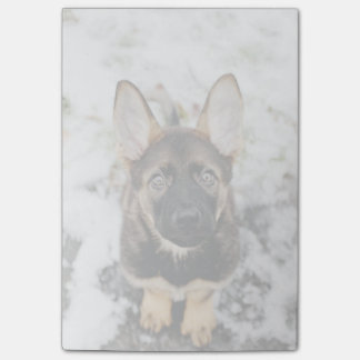 Cute Puppy Looking Up Post-it® Notes