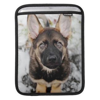Cute Puppy Looking Up Sleeve For iPads