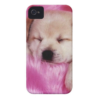 cute puppy on pink fur iPhone 4 cover