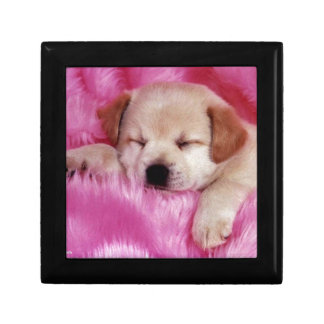 cute puppy on pink fur keepsake box