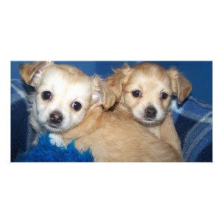 Cute Puppy Photo Card